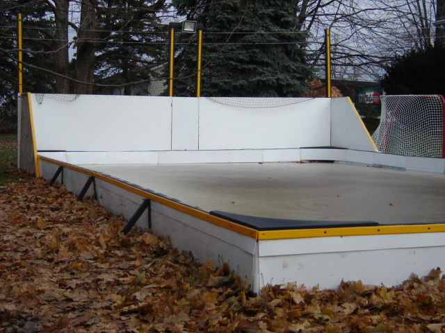 5 in 1 rink stake