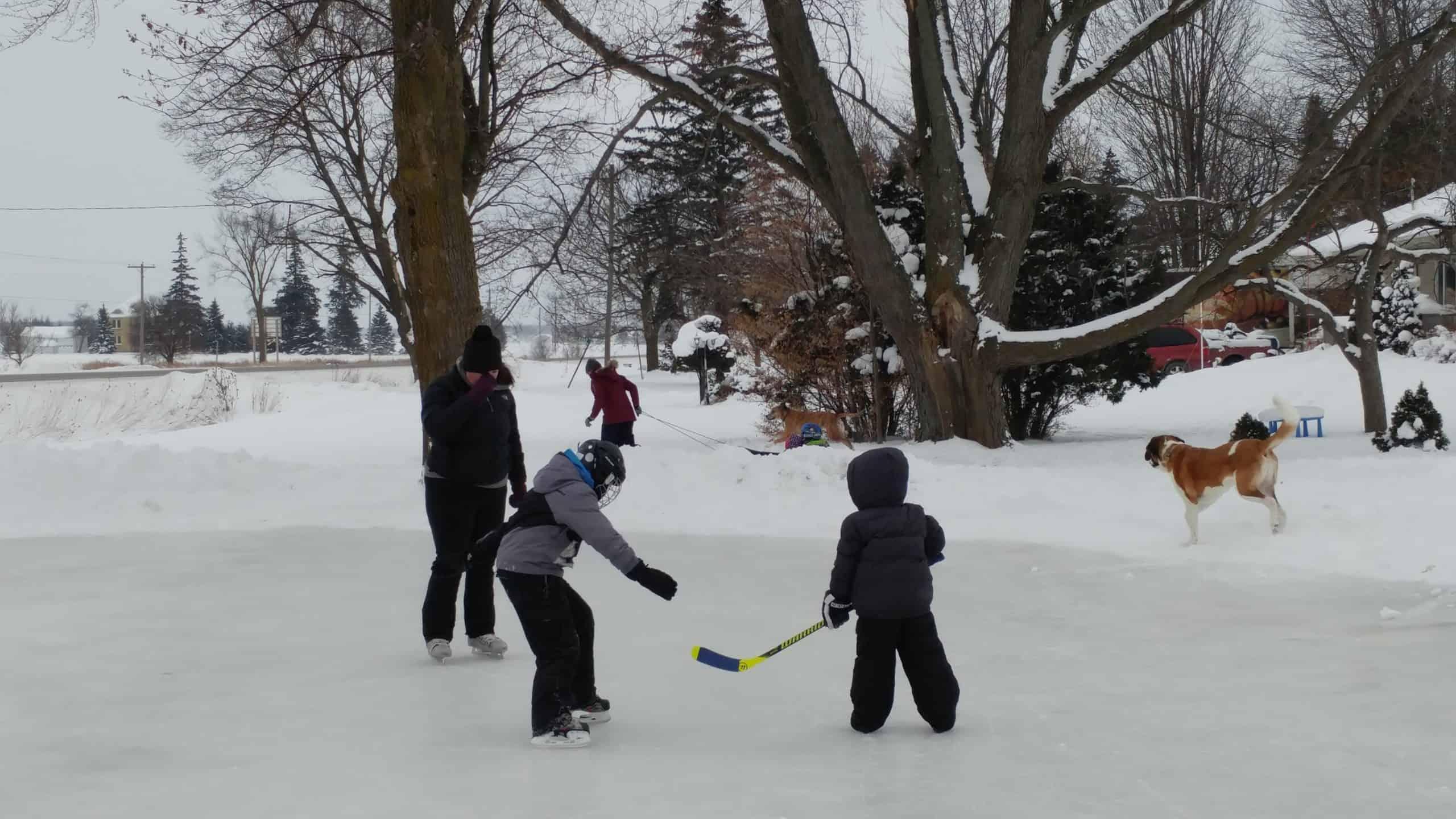 Ice Rink Kit Standard Sizes | Backyard Rink